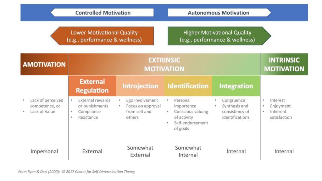 Extrinsische und intrinsische motivation beispiele