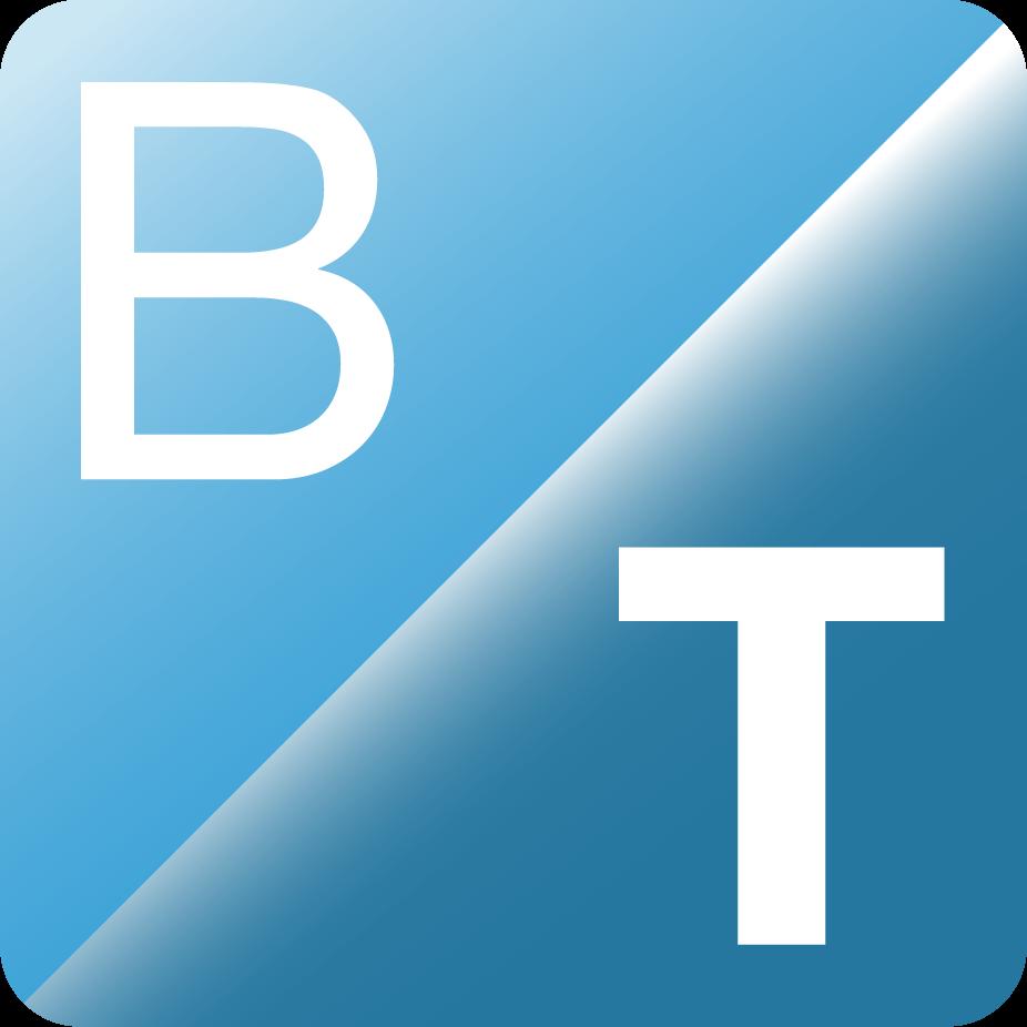 Logo vom BeratungTeam